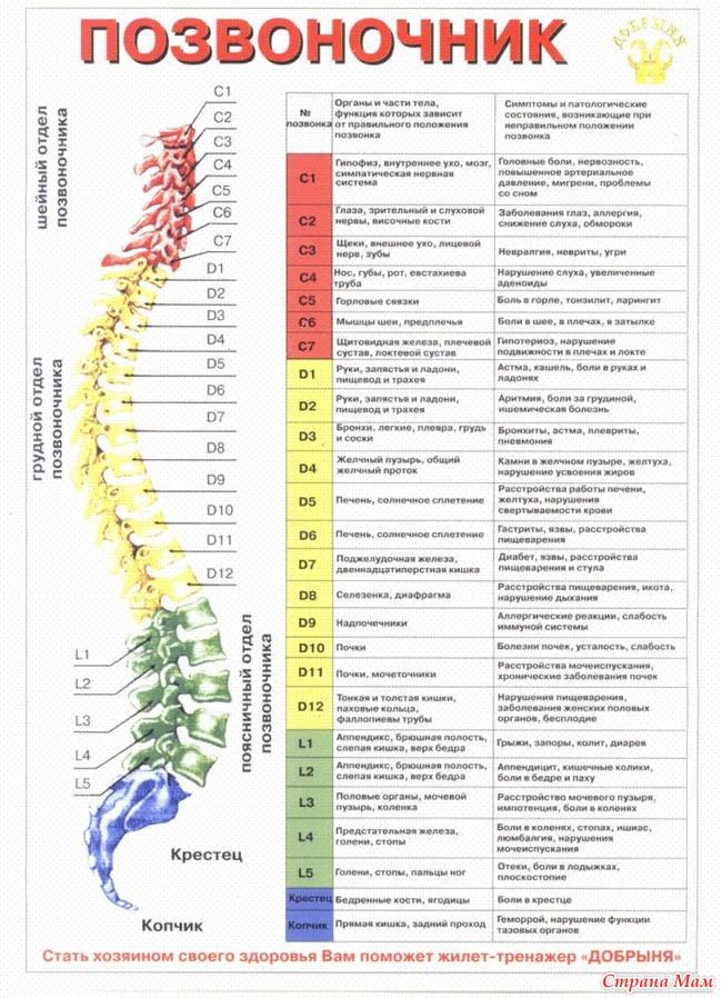 Люмбаго: симптомы, причины, стадии, диагностика и лечение