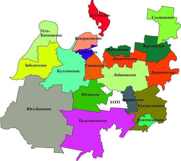 Органы местного самоуправления – это какие органы: структура системы муниципальной власти, когда введено понятие