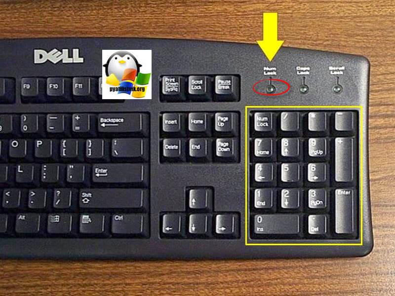 Нум лок на ноутбуке. num lock что это такое на клавиатуре