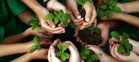 Основные природоохранные мероприятия: охрана природы земли, человека и окружающего его мира