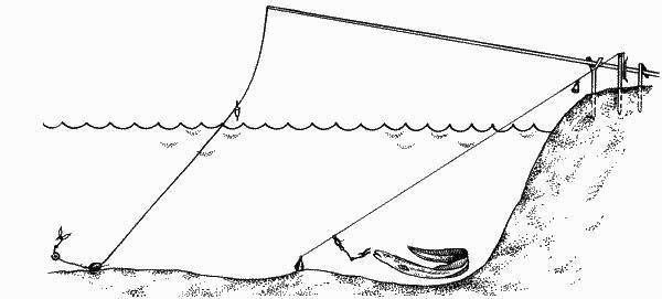 Ходовая донка: что собой представляет, схема сборки и как ловить