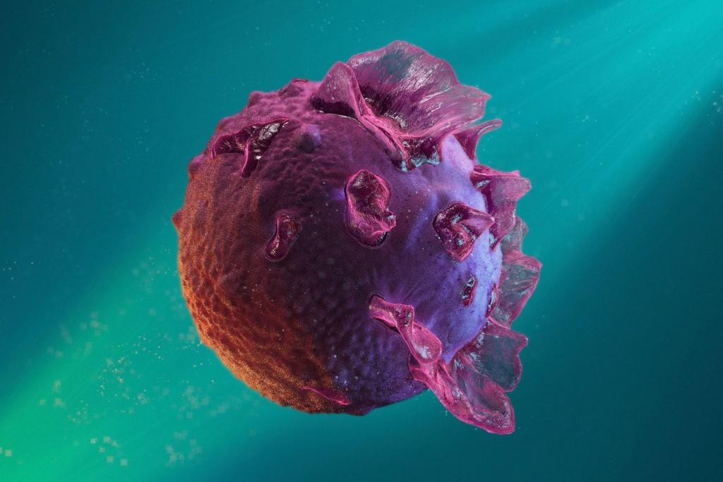 Вирус эпштейна–барр: как передается заболевание, симптоматика и клиническая картина, диагностические исследования и методы лечения патологии