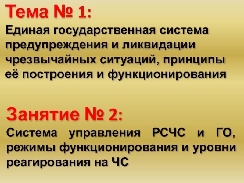 Единая государственная система предупреждения и ликвидации чрезвычайных ситуаций (рсчс)