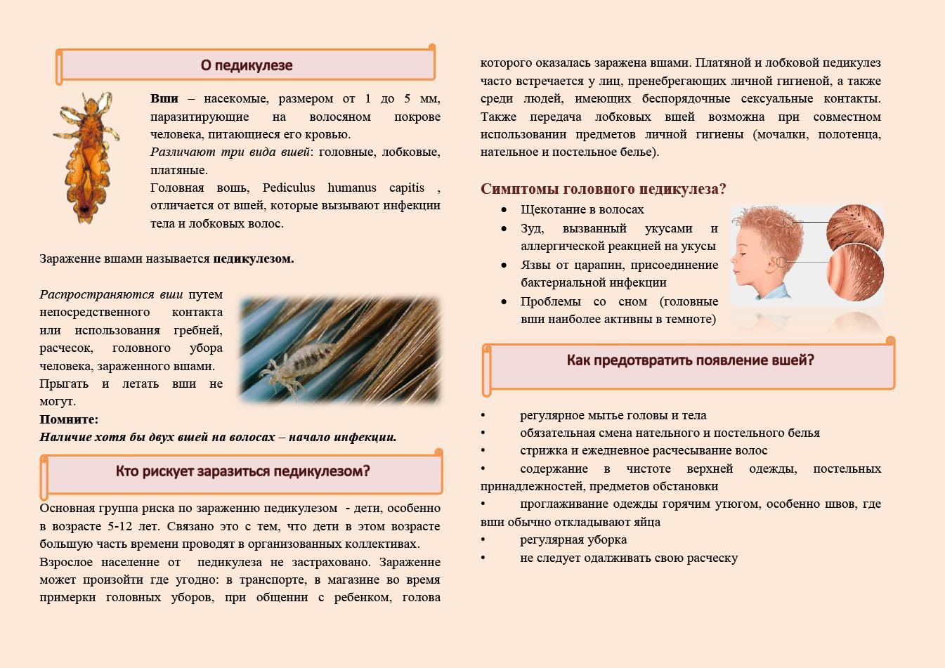 Педикулёз — википедия с видео // wiki 2