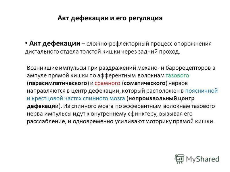 Дефекация — википедия. что такое дефекация