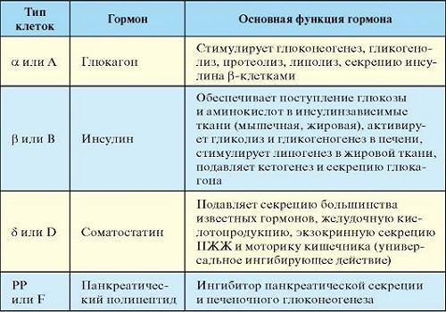 Что такое инсулин и какова его роль в организме? :: syl.ru