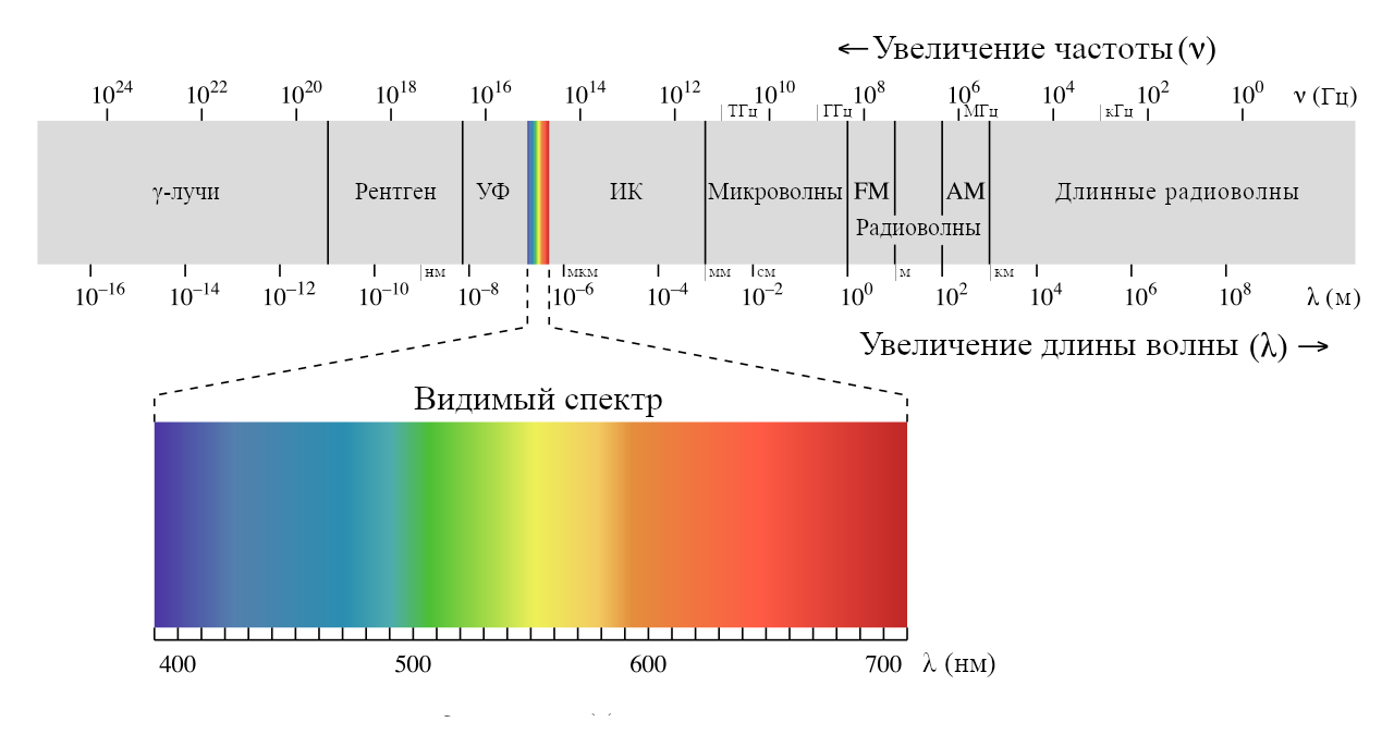 10 лучших примеров поперечных волн в реальной жизни | new-science.ru