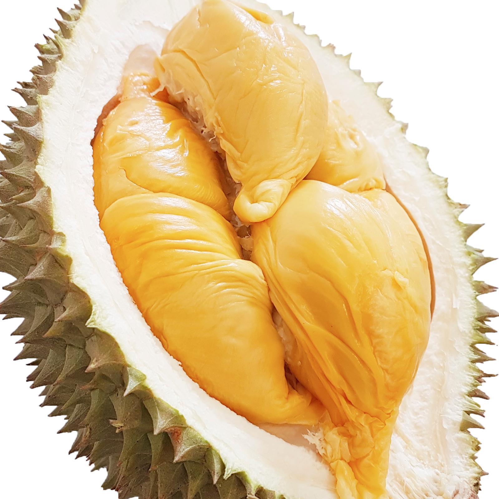 Дуриан и джекфрут: полезные свойства, фото, отзывы - thailand-trip.org