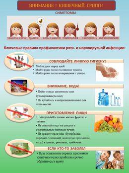 Норовирус: поступают тревожные сигналы