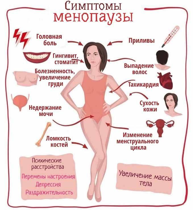 Что означает постменопауза в анализе крови