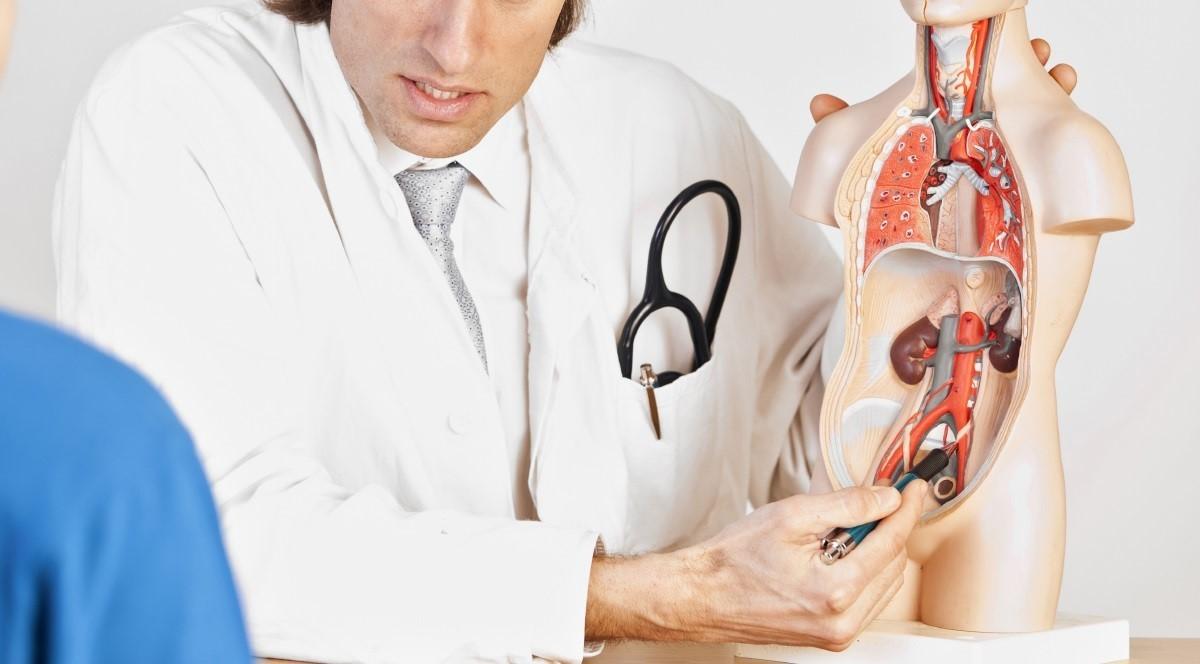 Андролог: кто это и что лечит. все о врачебной специальности андролог