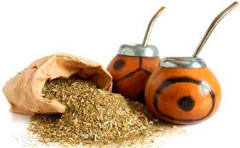 О полезных свойствах чая мате