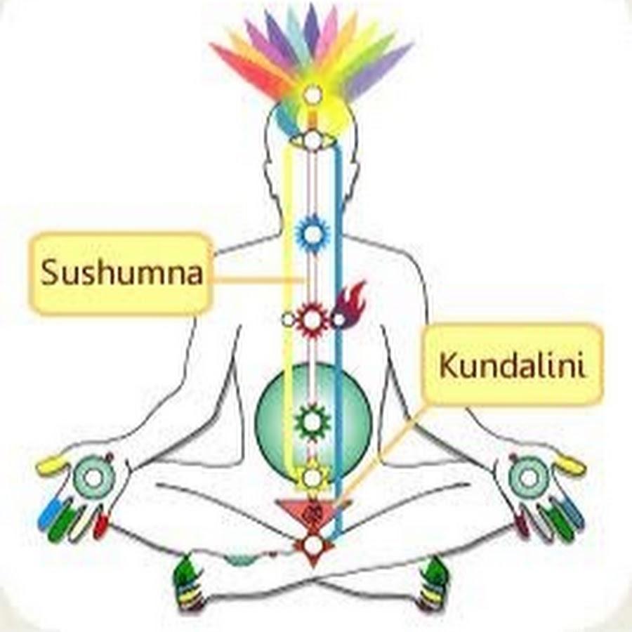 Кундалини йога: что это такое и какие включает в себя практики