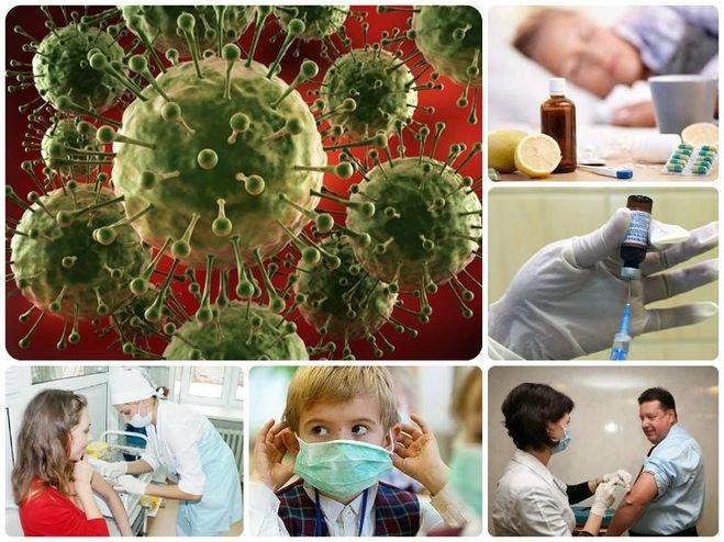 Коллективного иммунитета нет: ученые похоронили популярную концепцию борьбы сcovid-19