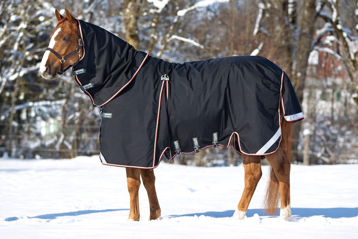 Размеры хомутов для лошади, особенности сбруи и упряжи