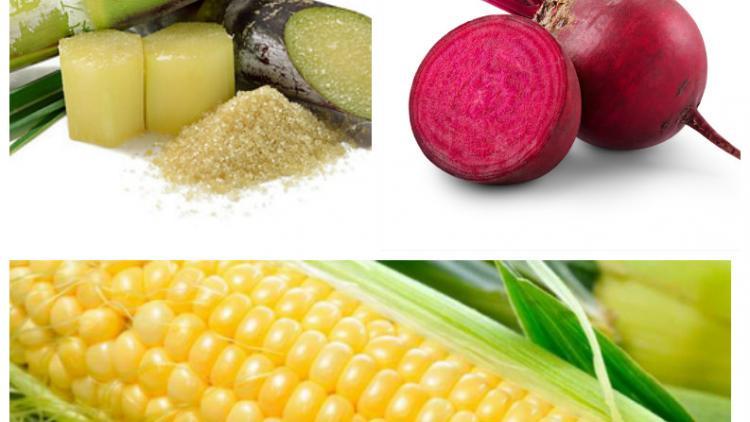 Сахароза, свойства, получение и применение