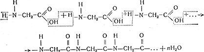 Что такое реакция полимеризации? реакция полимеризации: уравнение и примеры :: syl.ru