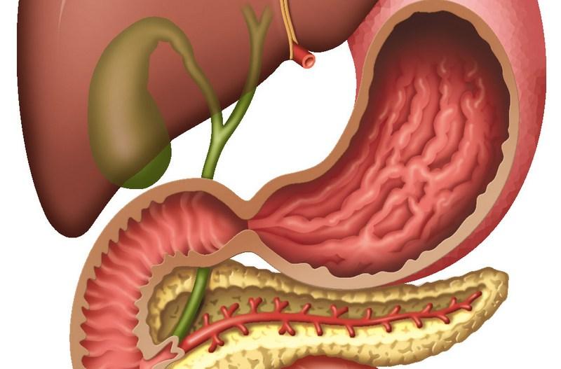 Нарушение оттока желчи: симптомы, лечение, упражнения