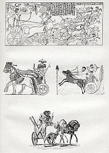 Таро колесница — значение старшего аркана