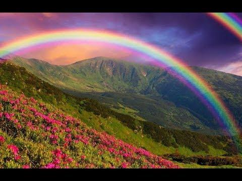 Что такое радуга детям | цветы жизни