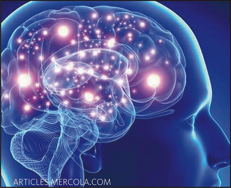 Рассеянный склероз: факты, о которых необходимо знать, и мифы, в которые нельзя верить