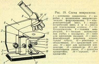 Микроскоп — википедия. что такое микроскоп
