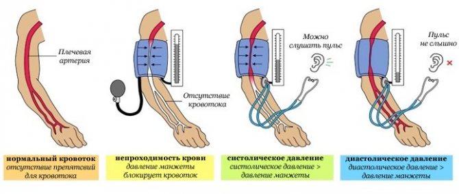 Маленькая разница между систолическим и диастолическим давлением. разница между верхним и нижним артериальным давлением? систолическое давление: за что отвечает?