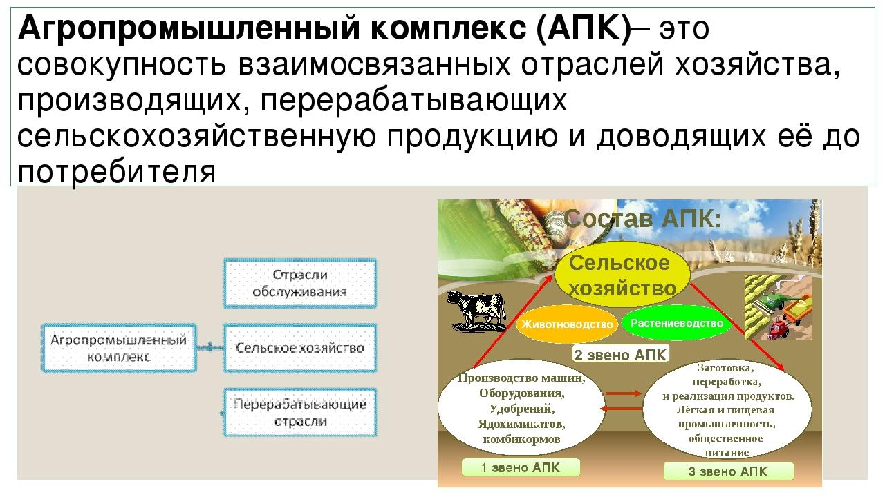Что такое апк: отрасли, средства производства :: businessman.ru