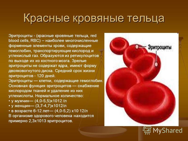 Что такое гемолиз крови при сдаче анализов
