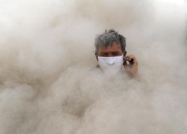 Аллергия на пыль: признаки, симптомы и профилактика