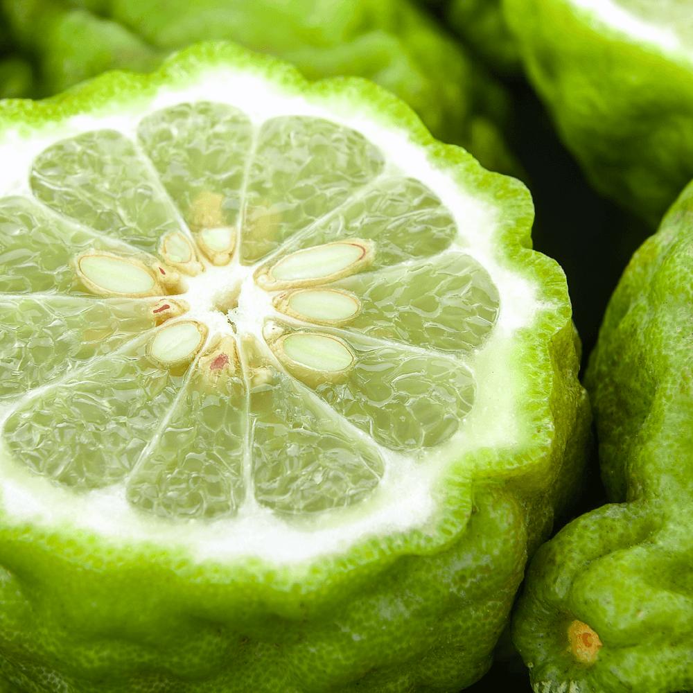Что такое бергамот и как он выглядит: подробное описание растения и его полезных свойств