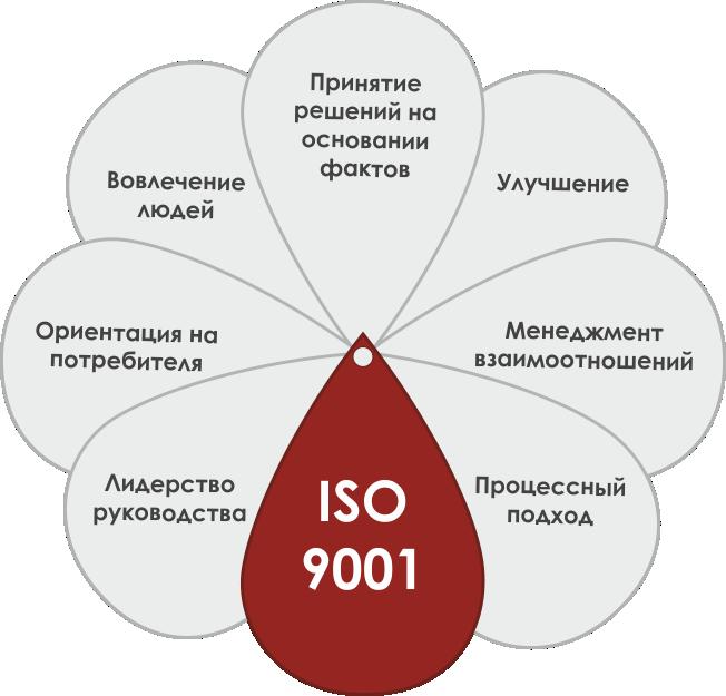 Менеджмент качества