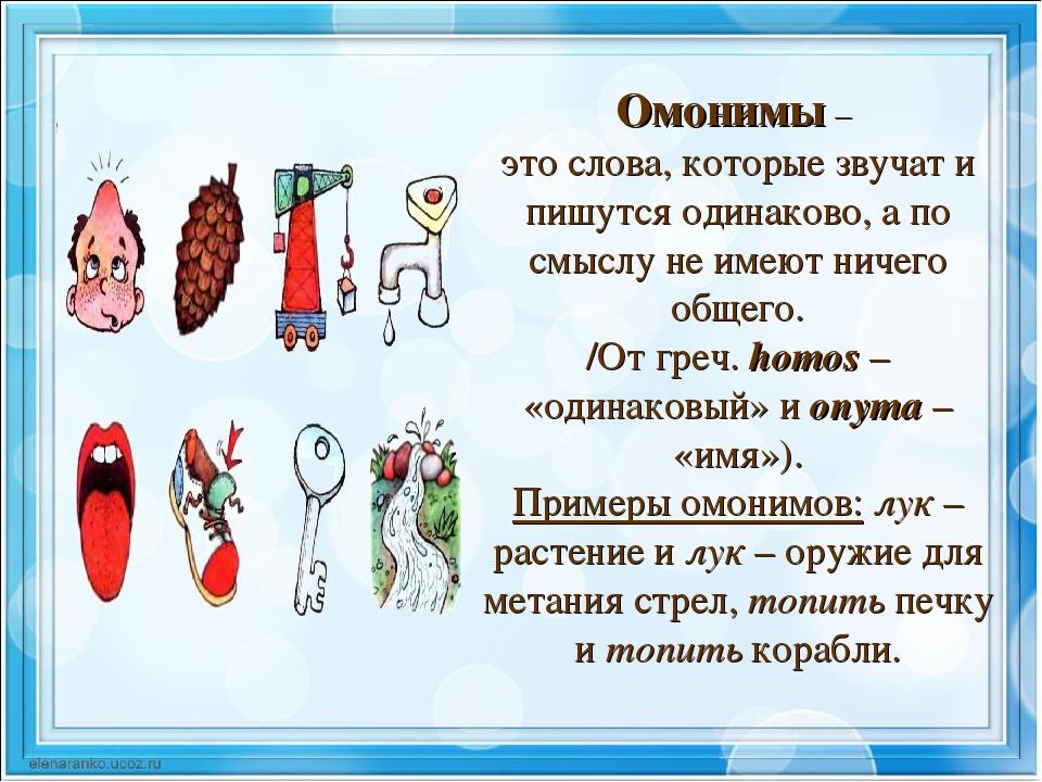 Омонимы — википедия. что такое омонимы