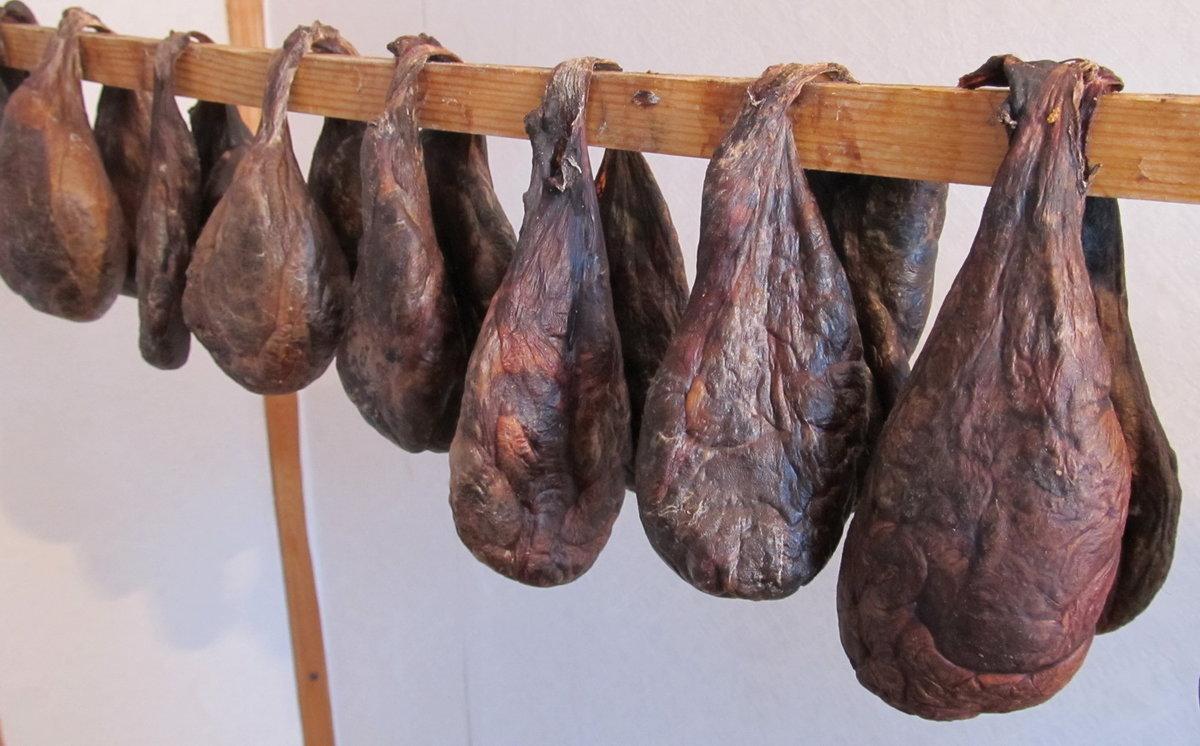 Лечебные свойства, показания к применению бобровой струи