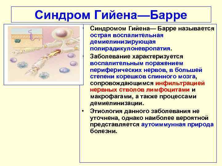 Синдром гийена — барре — википедия с видео // wiki 2