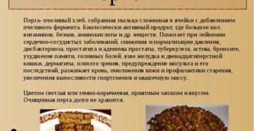 Перга пчелиная полезные свойства как принимать и хранить