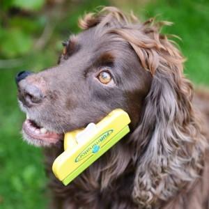 Фурминатор для короткошерстных и длинношерстных собак: какие бывают и как правильно выбрать подходящий