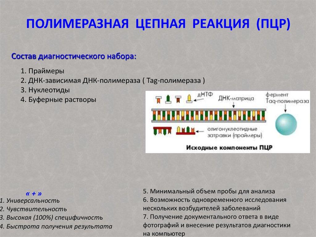 Мазок пцр, что это такое, пцр анализ для диагностики инфекций, подготовка, расшифровка