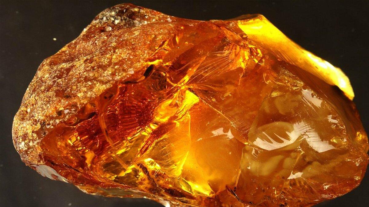 Янтарь — все о камне, фото, свойства, месторождения, кому подходит — jewellery mag