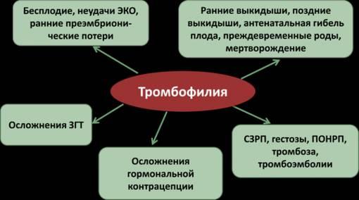 Тромбофилия | «московский доктор»