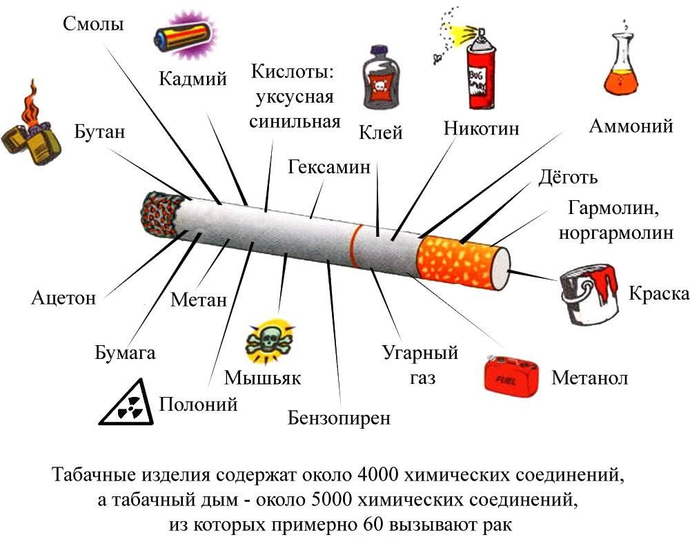 Как выбрать лучшие сигареты: рейтинг недорогих российских и зарубежных сигаретных марок