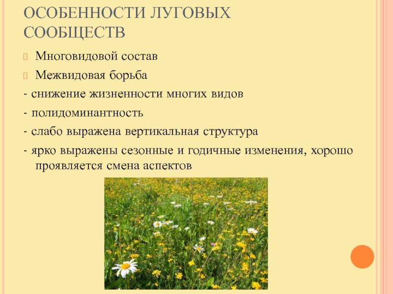 Фитоценоз