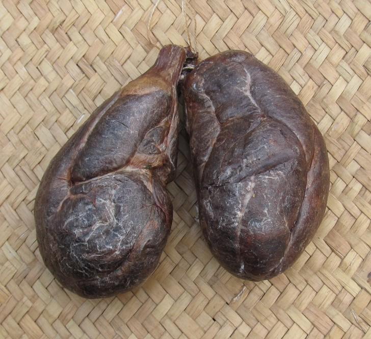 Полезные свойства бобровой струи