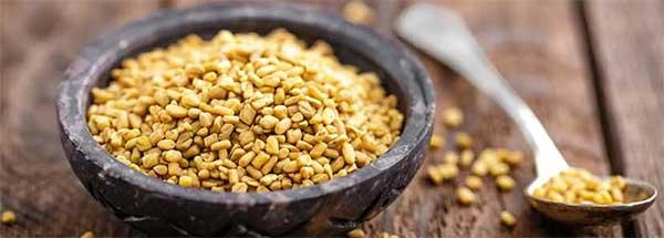 Многовековой целитель хельба – полезные свойства растения. какую пользу хельба может принести женскому здоровью?