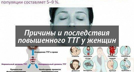 Ттг повышен - причины, как нормализовать ттг, беременность