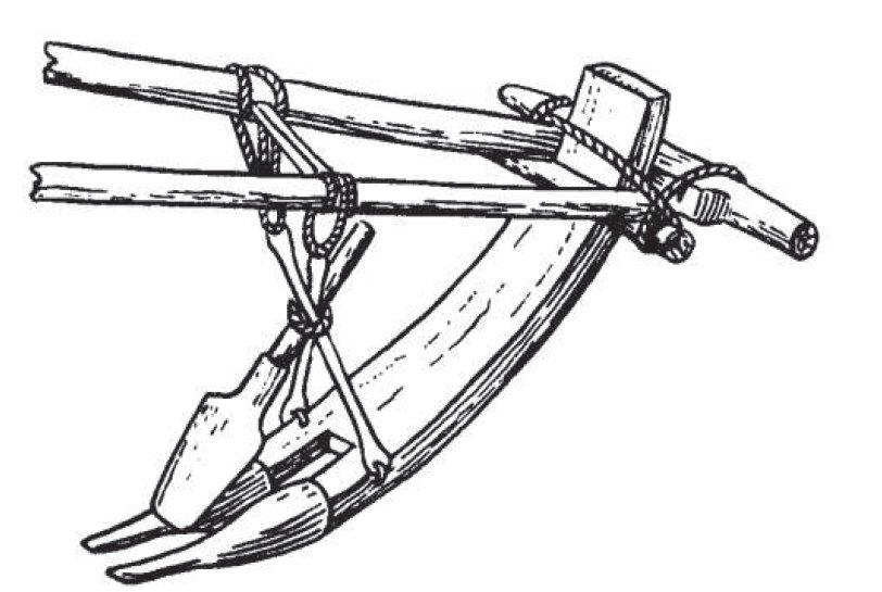 Соха (единица измерения)