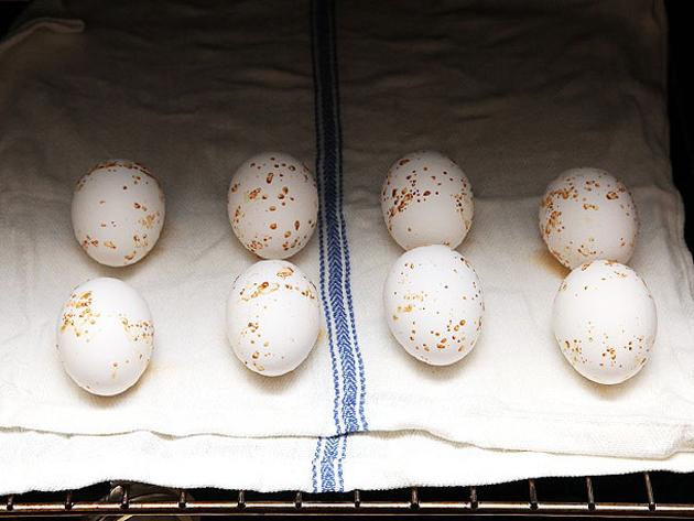 Как готовить яйцо пашот