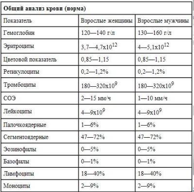 Пойкилоцитоз в общем анализе крови