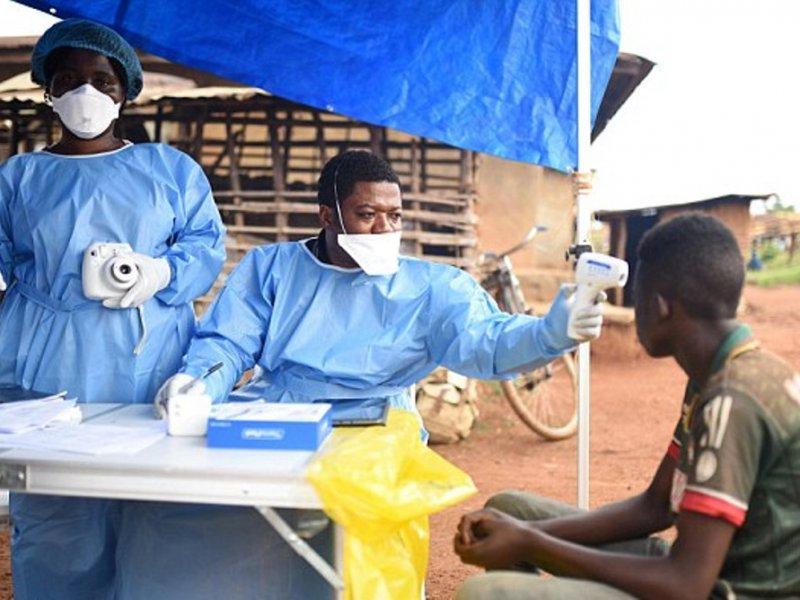 Вирус эбола: лихорадка, что это такое, симптомы, ebola, болезнь, геморрагическая, клиника, диагностика, лечение, профилактика