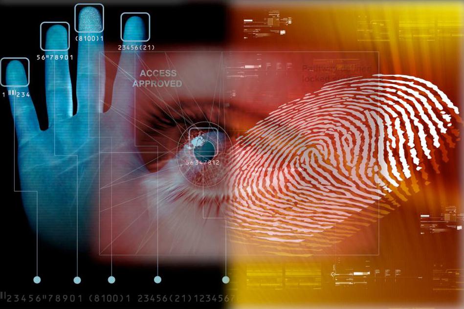Данные тела и закон: где и как работает биометрическое законодательство